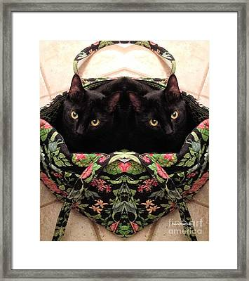 Framed Print featuring the photograph Twins by Luther Fine Art
