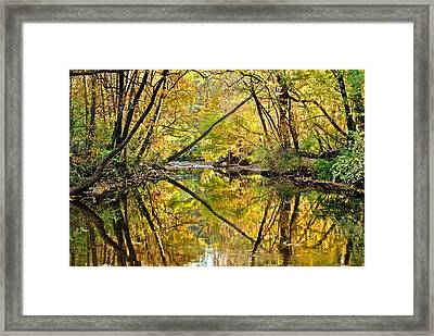 Twins Framed Print by Frozen in Time Fine Art Photography