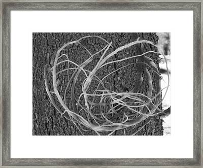 Framed Print featuring the photograph Twirl by Tarey Potter