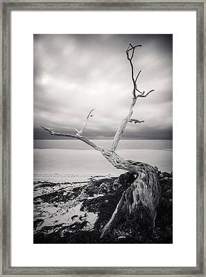 Twisted Framed Print by Adam Romanowicz