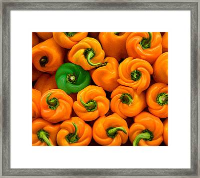 Twisted Peppers Framed Print