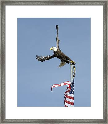 Twisted Take-off Framed Print