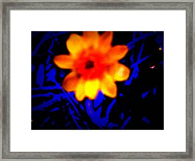 Twisted Wild Flower Framed Print