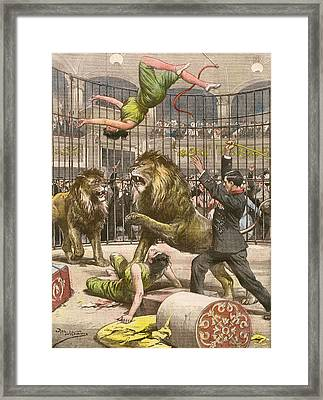 Two Acrobats Fall Into The  Lions' Framed Print by Mary Evans Picture Library