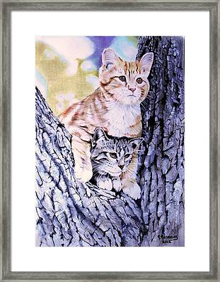 Two Amigos Framed Print by Hendrik Hermans