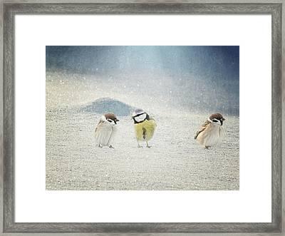 Two And One Framed Print by Heike Hultsch