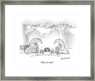 Two Anteaters On A Picnic Wait For Ants To Come Framed Print by David Borchart