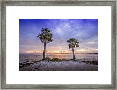Two Are Better Than One Framed Print by Marvin Spates