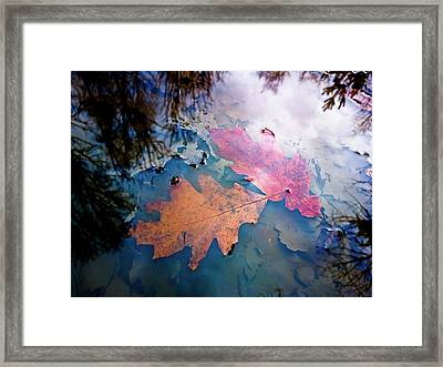 Two Autumn Leaves Framed Print by Milan Surkala