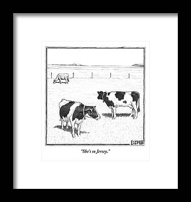 Cow Framed Prints