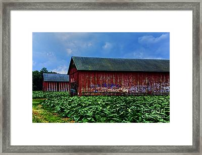 Two Barns Ready Framed Print