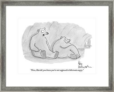 Two Bears In A Cave Framed Print