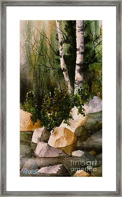 Two Birch By Rocky Stream Framed Print by Teresa Ascone