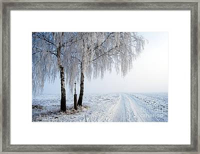 Two Birch Trees With Wayside Cross Framed Print
