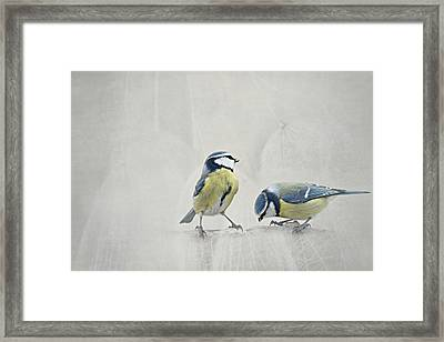 Two Birds Framed Print by Heike Hultsch