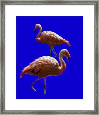 Two Birds Framed Print