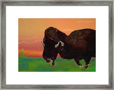 Two Bison Framed Print by Kae Cheatham