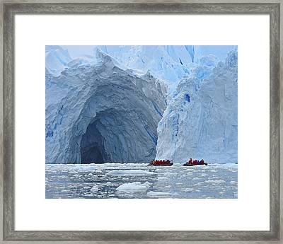 Two Blue Framed Print by Tony Beck