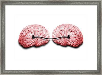 Two Brains Connected By A Wire Framed Print