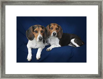 Two Brothers Framed Print