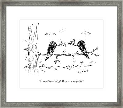 Two Buzzards Sit And Talk On A Branch Framed Print by David Sipress