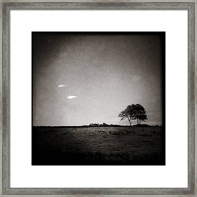 Two Clouds And A Tree Framed Print by Dave Bowman