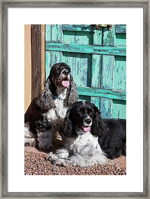 Two Cocker Spaniels In Front Of An Old Framed Print
