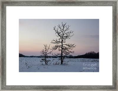 Two Cold... Framed Print