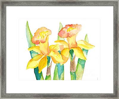 Two Daffodils Framed Print
