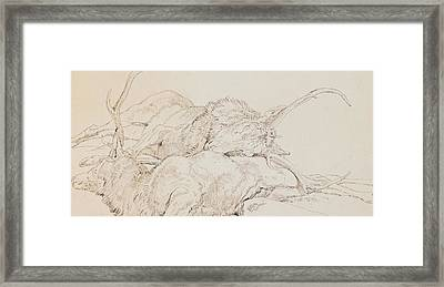 Two Dead Stags Framed Print