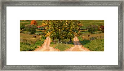 Two Dirt Roads Passing Through Farms Framed Print