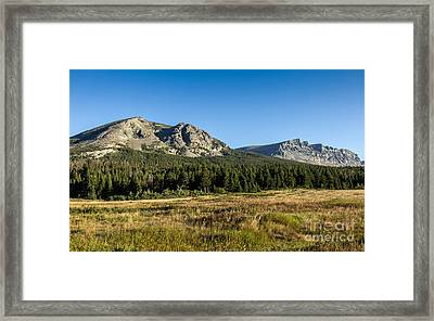 Two Dog Flat Framed Print by Robert Bales