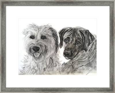 Two Dog Night Framed Print