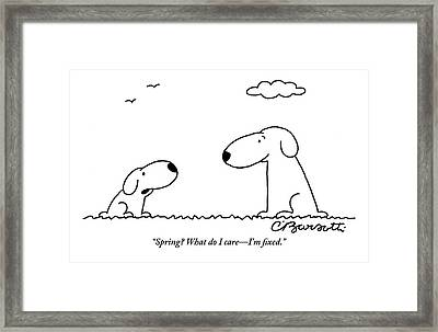 Two Dogs Are Seen Talking To Each Other Framed Print