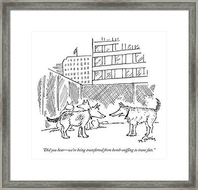 Two Dogs In A Kennel Speak To Each Other Framed Print by Mike Twohy