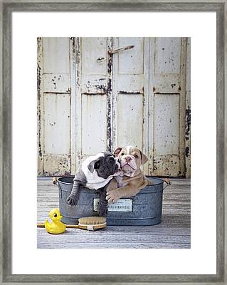 Two Dogs In Tub Framed Print by Lisa Jane