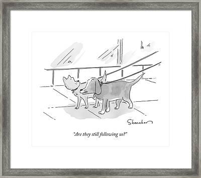 Two Dogs On Leashes Framed Print