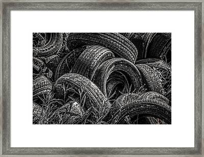 Two Dozen Framed Print