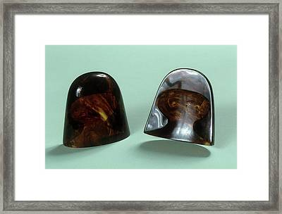 Two Ear Cones Framed Print by Science Photo Library