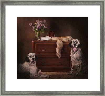 Two English Setters... Framed Print