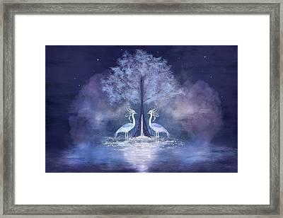 Two Fabulous Herons Framed Print
