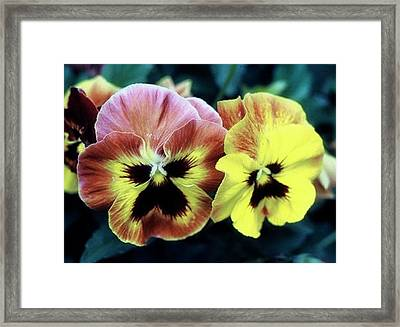 Two Faces Framed Print