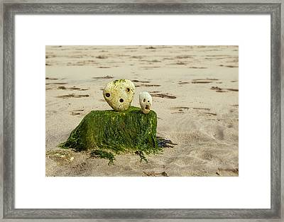 Two Faces Framed Print by Svetlana Sewell