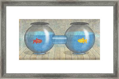 Two Fish Framed Print by Steve Dininno