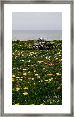 Framed Print featuring the photograph Two For The Road 2 by Theresa Ramos-DuVon