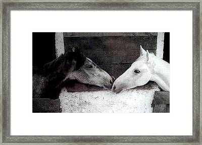 Two Friends For Life Framed Print