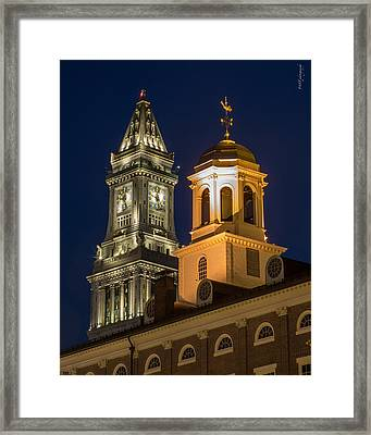 Two Gems Framed Print