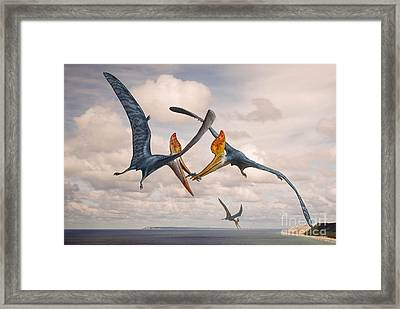 Two Geosternbergia Pterosaurs Fighting Framed Print by Sergey Krasovskiy