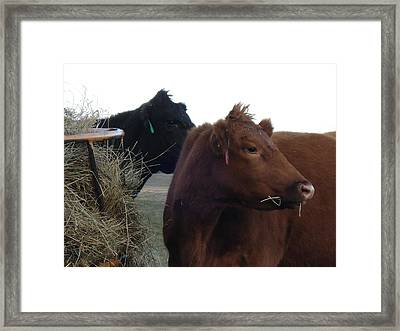 Framed Print featuring the photograph Two Girls by J L Zarek