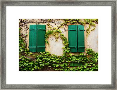 Two Green Shutters And Ivy In Alsace Framed Print
